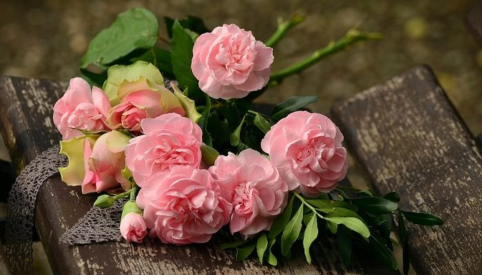 Pink Roses Meaning And Symbolism